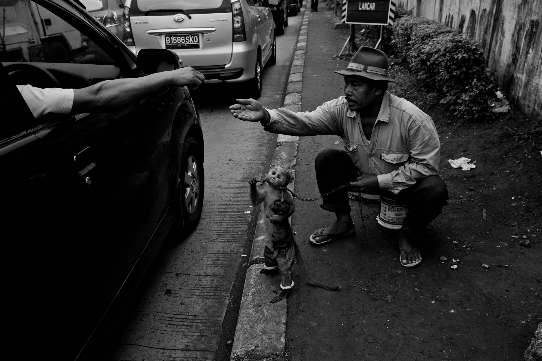 Monkey handler begs with performing monkey Jakarta, Indonesia